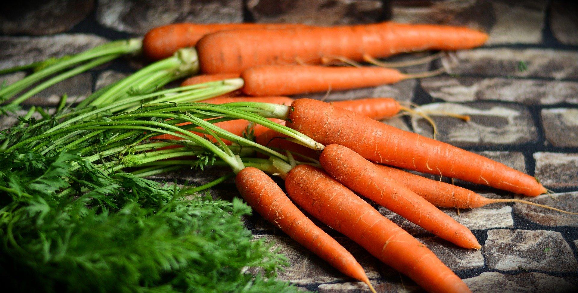 carotte-de-tilques